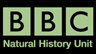 BBC Natural History Unit