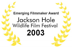 Emerging Filmmaker Award