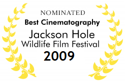 Jackson Wildlife Film Festival Award 2009 Best Cinematography