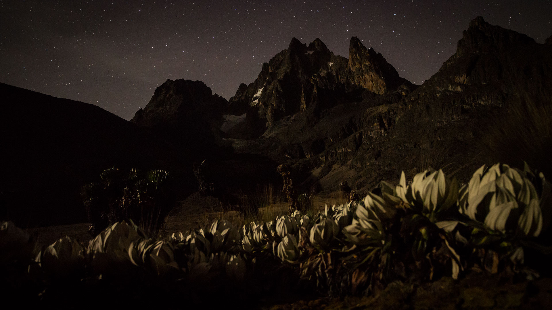 Mt Kenya Night